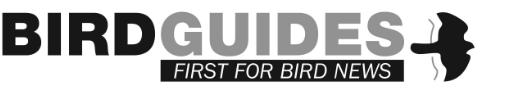 BirdGuides Logo